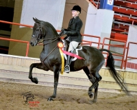 mirabels-annabella-19T_6143